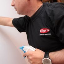 Allpro General Cleaning